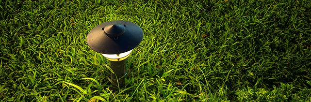 Landscape Lighting in Jupiter, Palm Beach Gardens, Lake Worth, Lantana, Delray Beach, and Wellington, FL